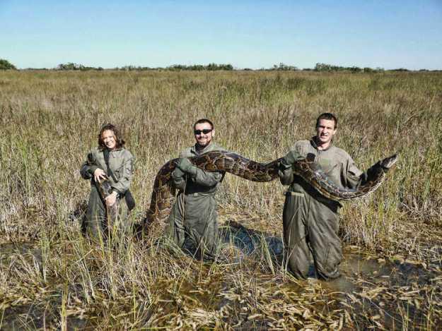 fl-python-killing