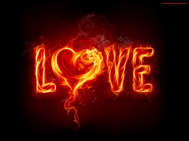 photography-wallpapers-love-heart-love-fire-allneed-pics