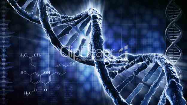 24--328650-DNA strand