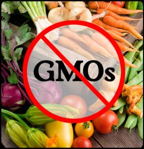 No-GMO2