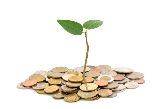 Seed-Money2