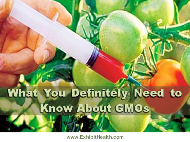 gmo-what-you-should-know-banner-704797_650x488