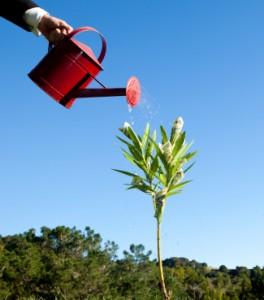 hubspot-enterprise-give-lead-nurturing-a-boost