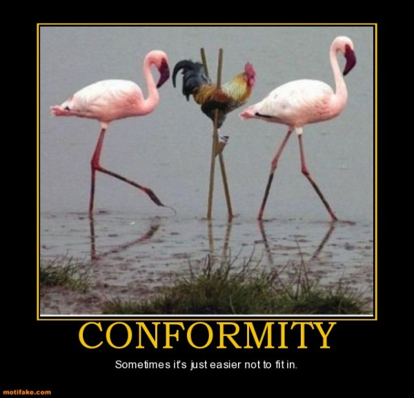 conformity vs society The definition of non-conformity is considered a failure to society is a joint stock company in which members agree for the better securing of his bread to.