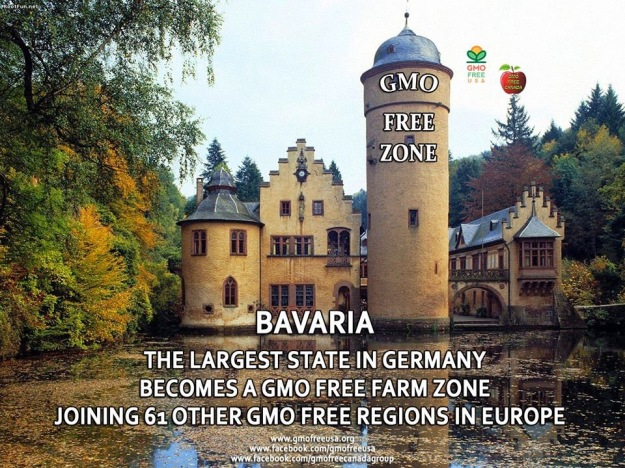 gmo germany