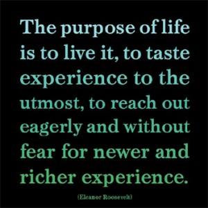 mormon-purpose-of-life1-e1389802775451