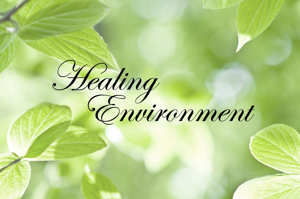 Feng-Shui-Healing-Environment