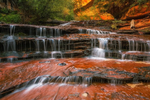 Water-fall-Zion
