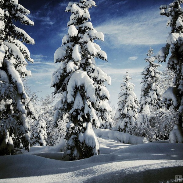 Enchanting-Winter-Landscapes-8-600x602