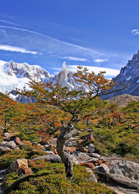 Autumn, Patagonia, Chile