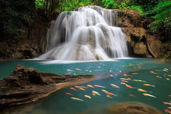 huai_mae_kamin_waterfall_kanchanaburi_province_thailand_5425585471