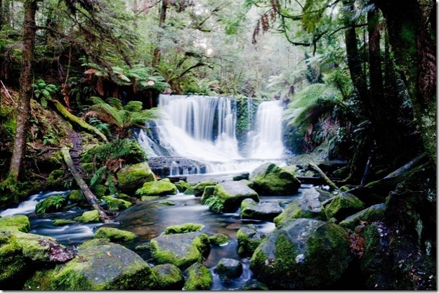 Lady-Barron-Falls-Mt.-Field-National-Park-Tasmania_thumb