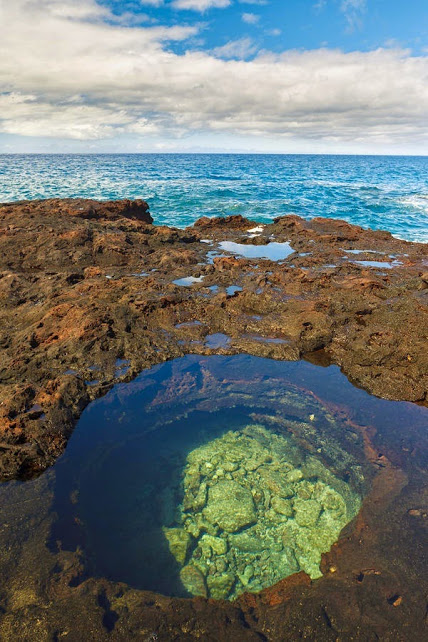 Tide Pool - Hulopoe Bay Hawaii