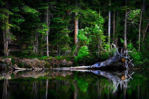 Bear Lake3