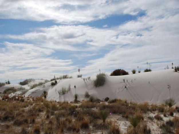 white_sands_national_park_10