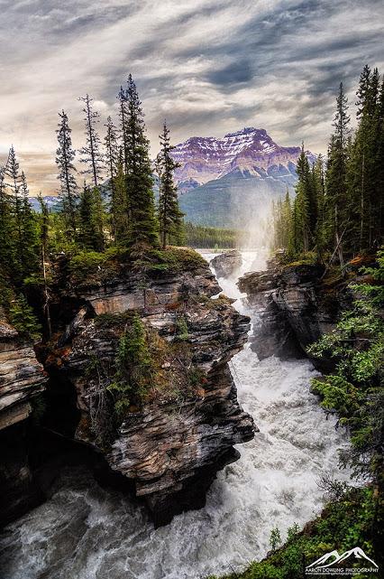 ANT_3641 - Athabasca Falls & Mt. Kerkeslin