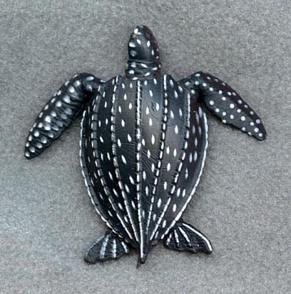 fact-about-sea-turtle-Leatherback-turtle
