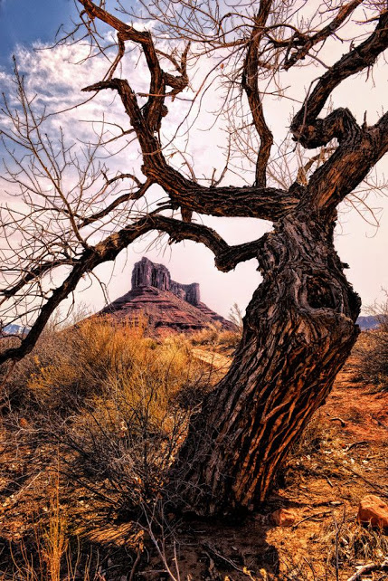 Land of the Ancients by Jeff Clow (Near Moab, Utah) on 500px