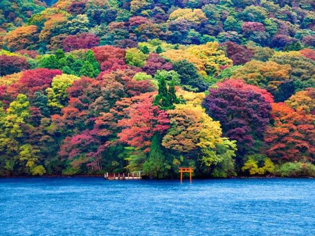 4-lake-Ashi