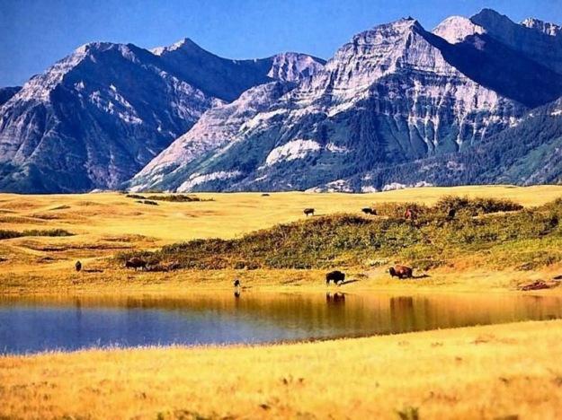 Canadian-Rockies-2