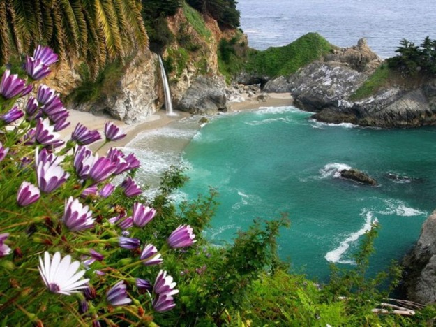 Julia_Pfeiffer_Burns_State_Park_