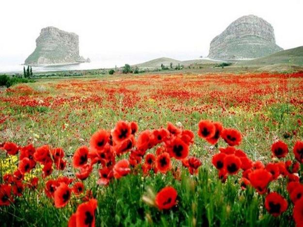 Landscapes-of-Iran1