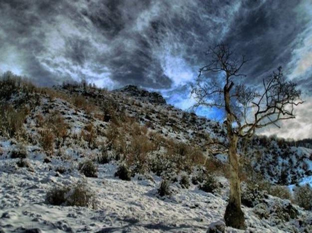 Landscapes-of-Iran11