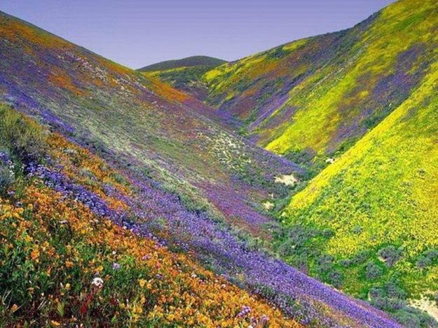 Landscapes-of-Iran2