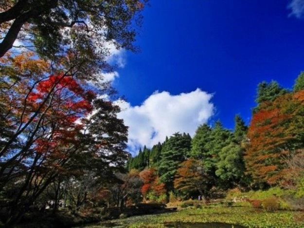 beautiful-autumn-pictures-11
