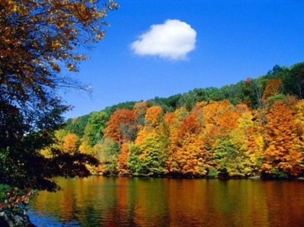 beautiful-autumn-pictures-23