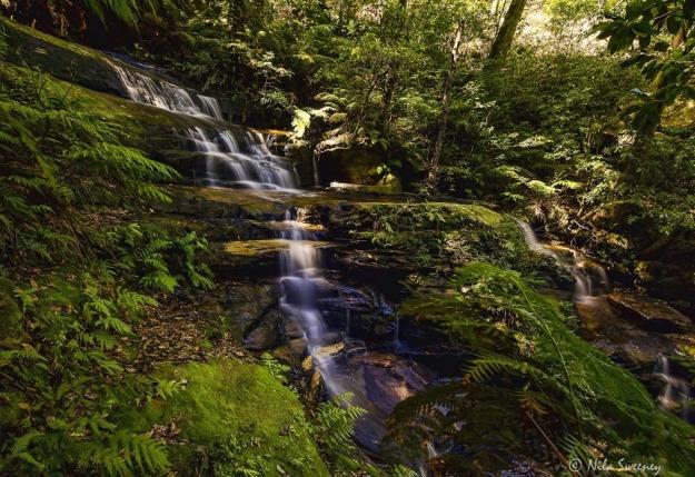 Nila Sweeney Wentworth Falls-1
