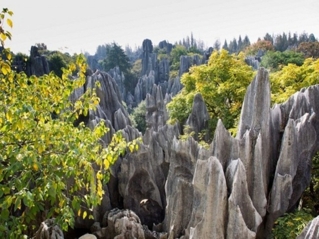 shilin-stone-forest-22-640x426