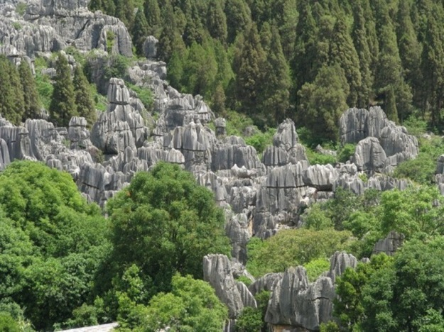 shilin-stone-forest-62-640x479