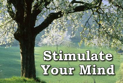 StimulateYourMind