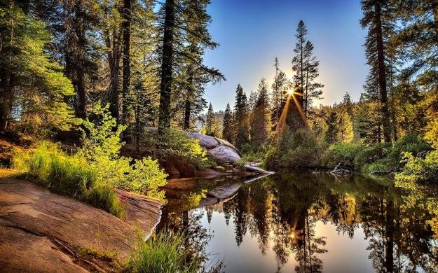 beautiful-morning-505011