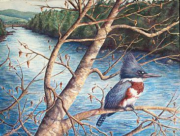 66_kingfisher