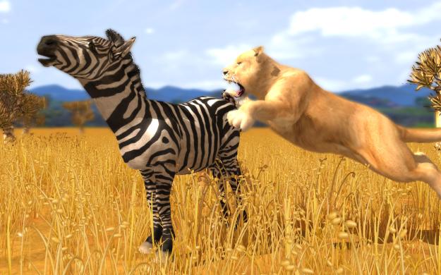 2528670-wildlife+park+3_lionattack_zebra