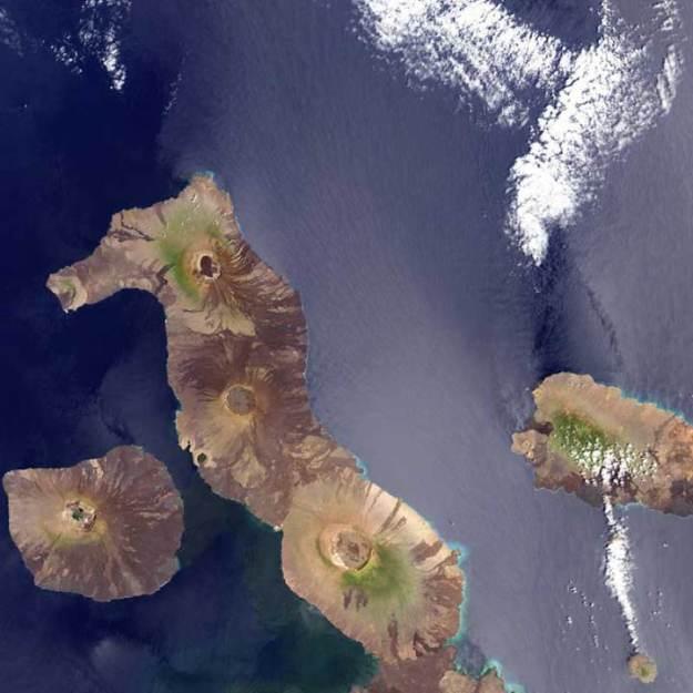 Seahorse-Island-Galapagos-Ecuador