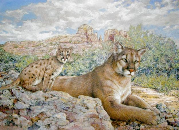 Wildlife_Art_Mountain_Lion_w_Cub