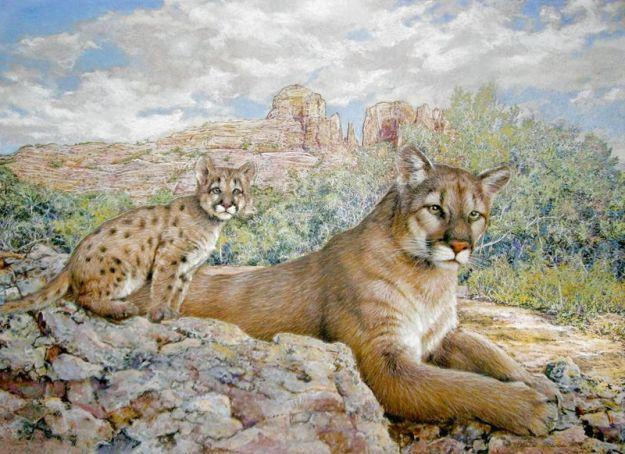 Wildlife_Art_Mountain_Lion_w_Cub