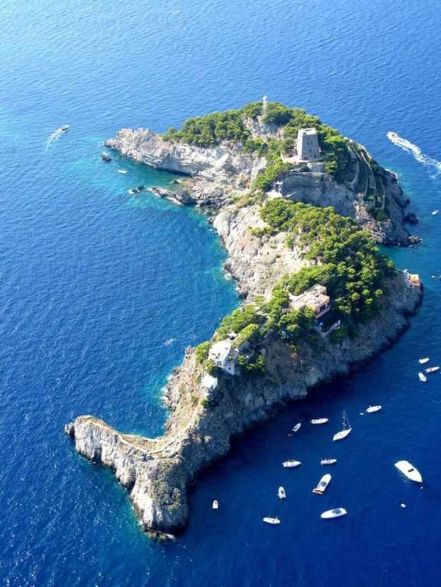 Dolphin-Island-Italy