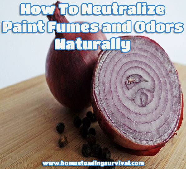 How-To-Neutralize-Paint-Fumes-and-Odors-Naturally