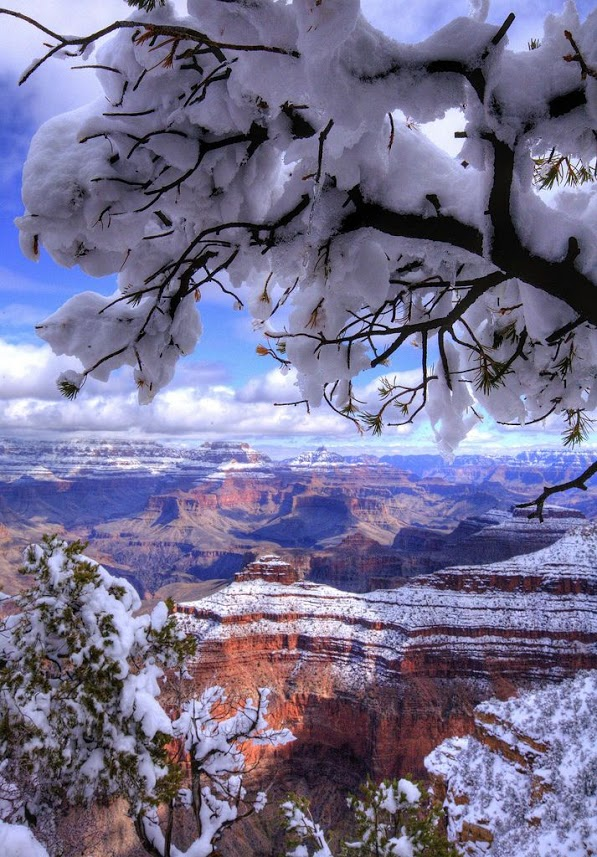 The Grand Canyon in winter.-