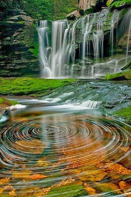 Black Water Falls, Virginia