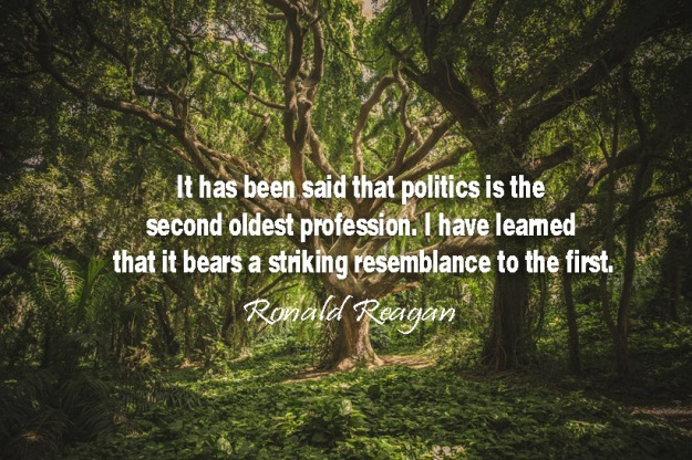 It-has-been-said-that-politics-is-the-second-oldest-profession