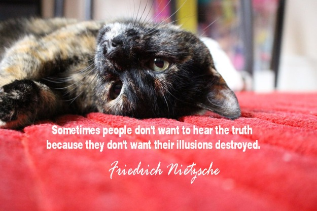 Sometimes-people-dont-want-to-hear-the-truth-because-they-dont-want-their-illusions-destroyed