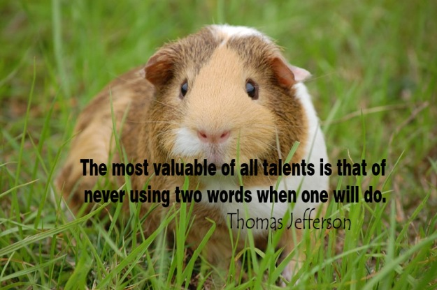 The-most-valuable-of-all-talents-is-that-of-never-using-two-words-when-one-will-do
